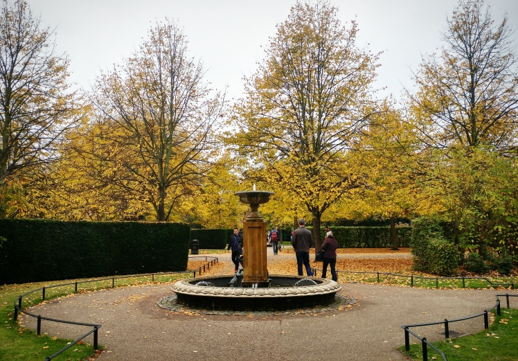 regents-park-autumn-leaves-fountain